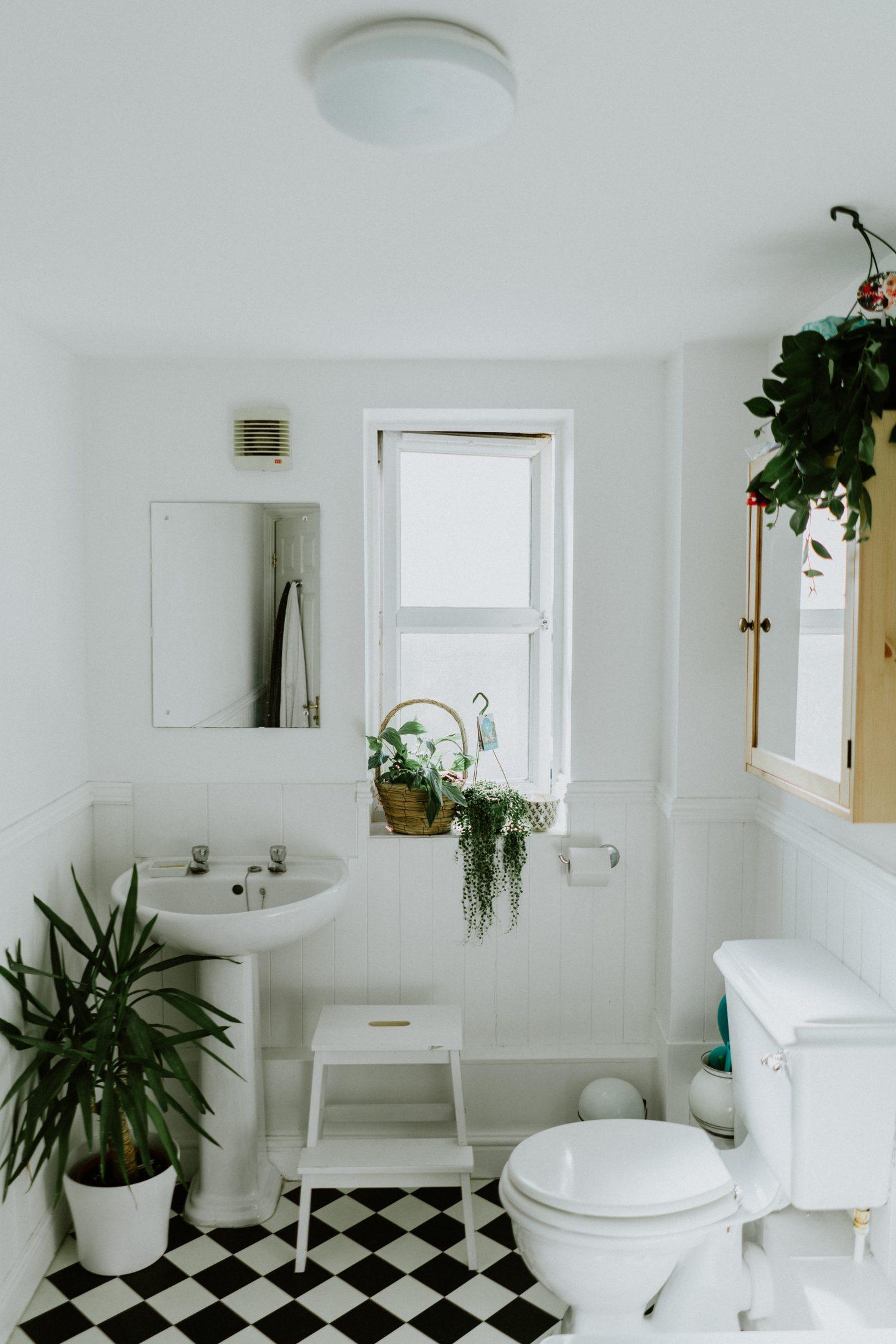 Zero waste series: Your guide to a Zero waste bathroom