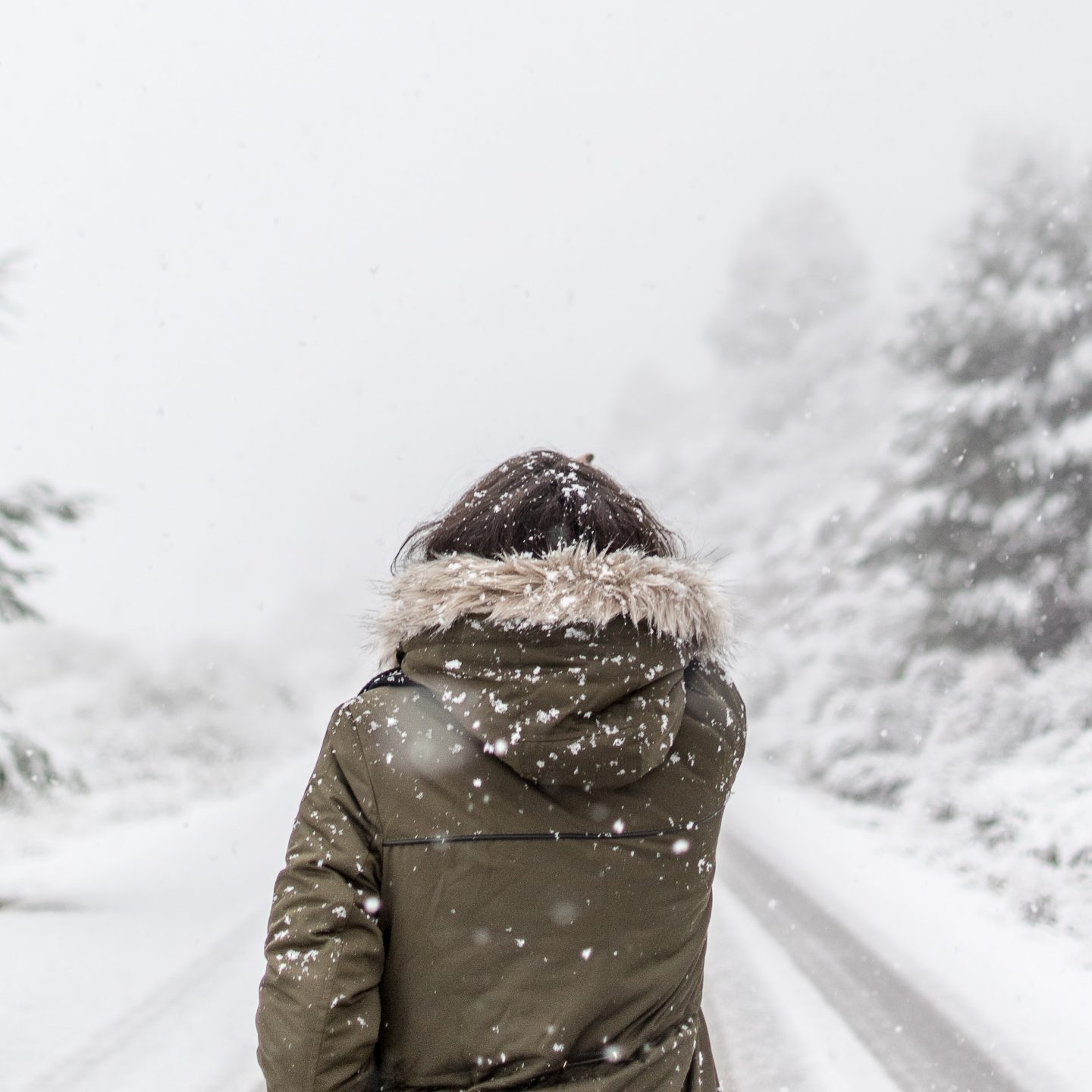 Ethical winter jackets