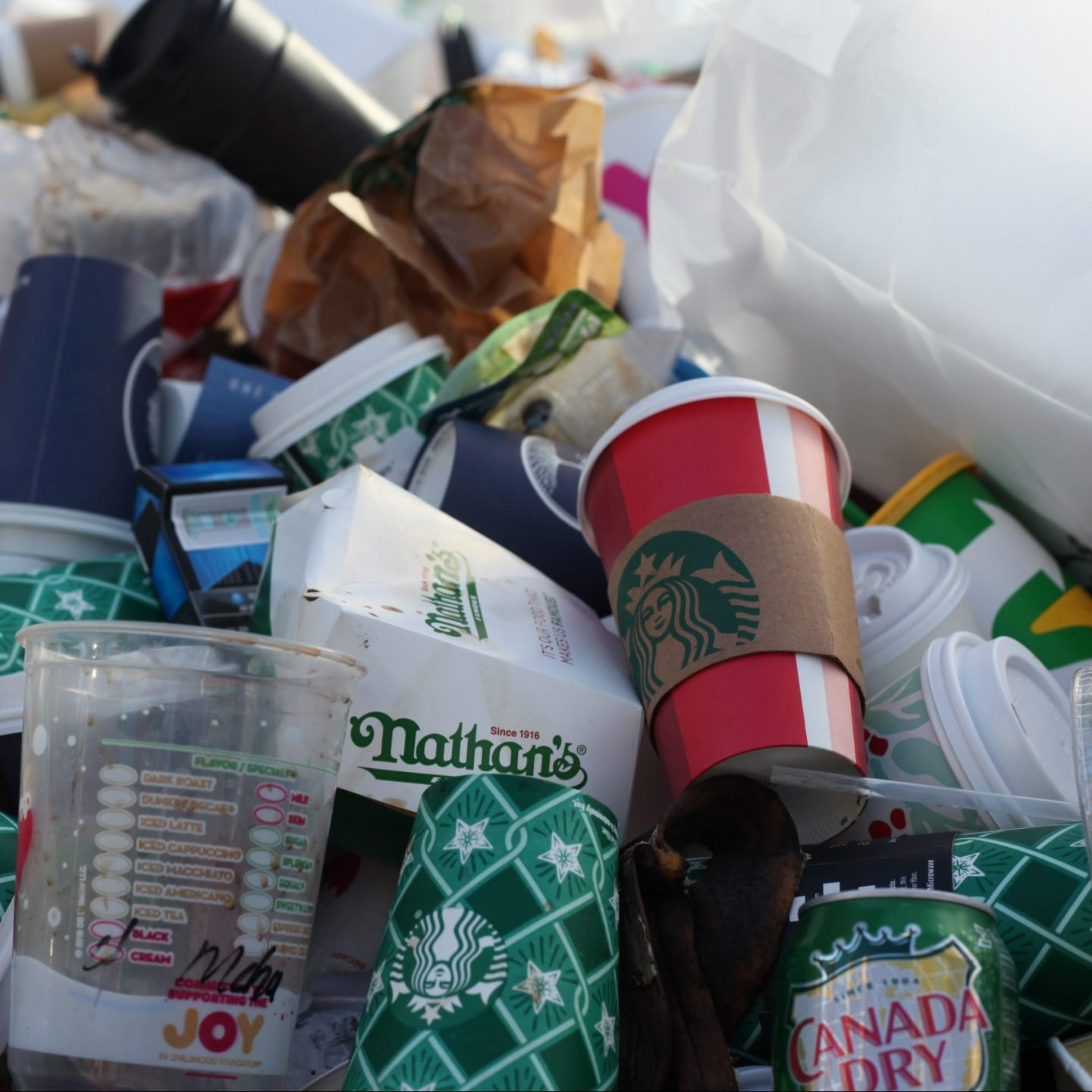 Why 'Biodegradable' and 'Compostable' Plastics won't help the plastic crisis