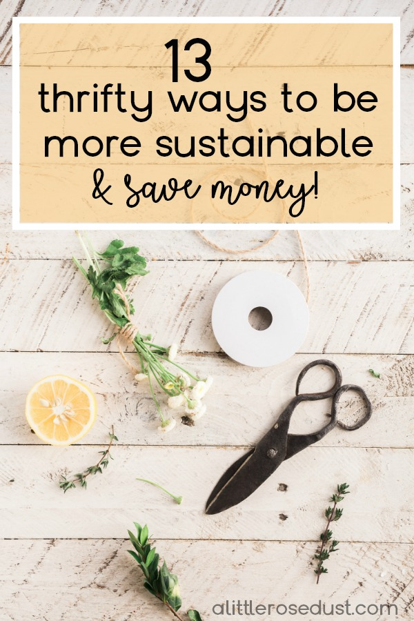thrifty ways to be more sustainable