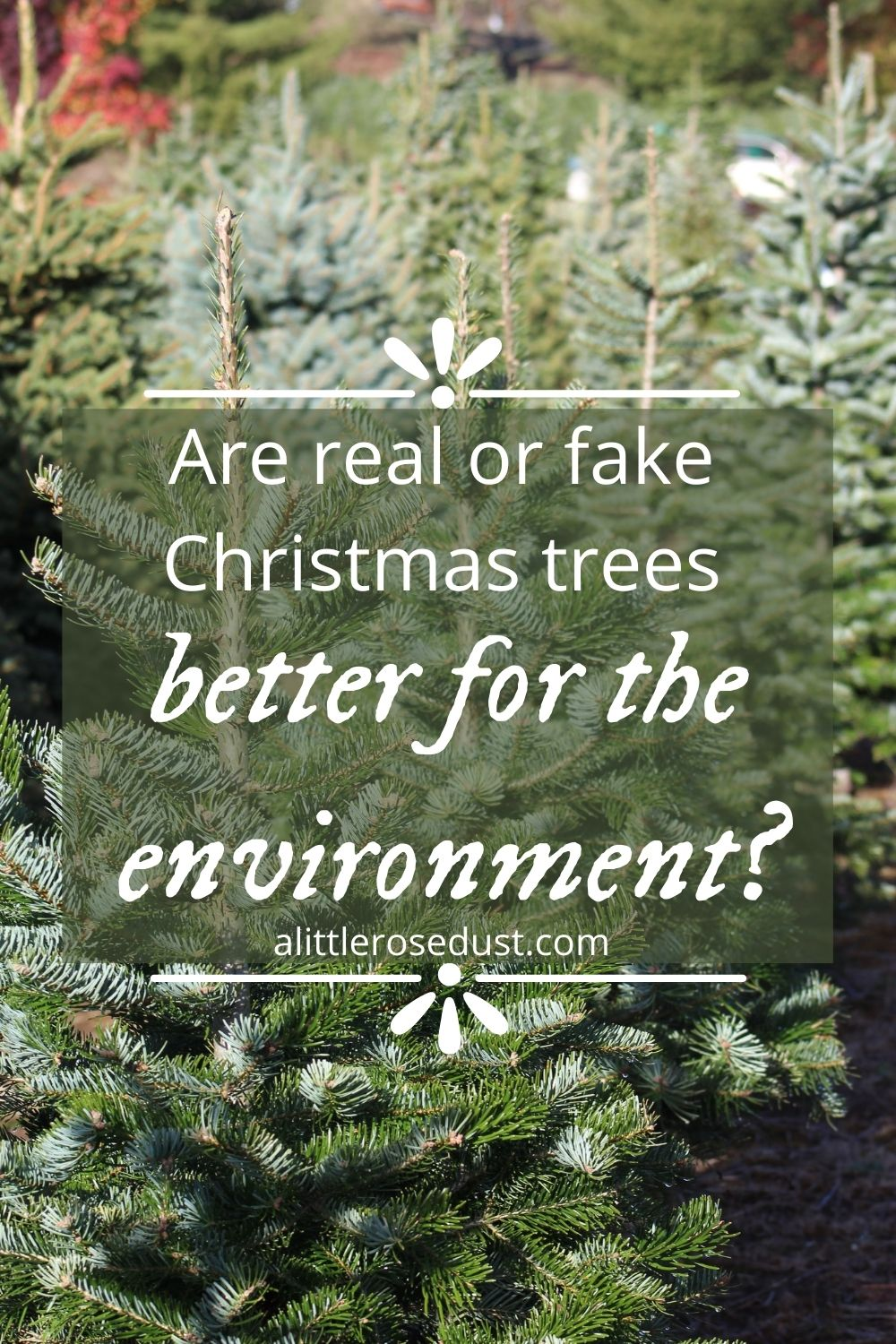 are real or fake Christmas trees better fot he environment